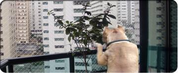 redes proteccion de mascotas